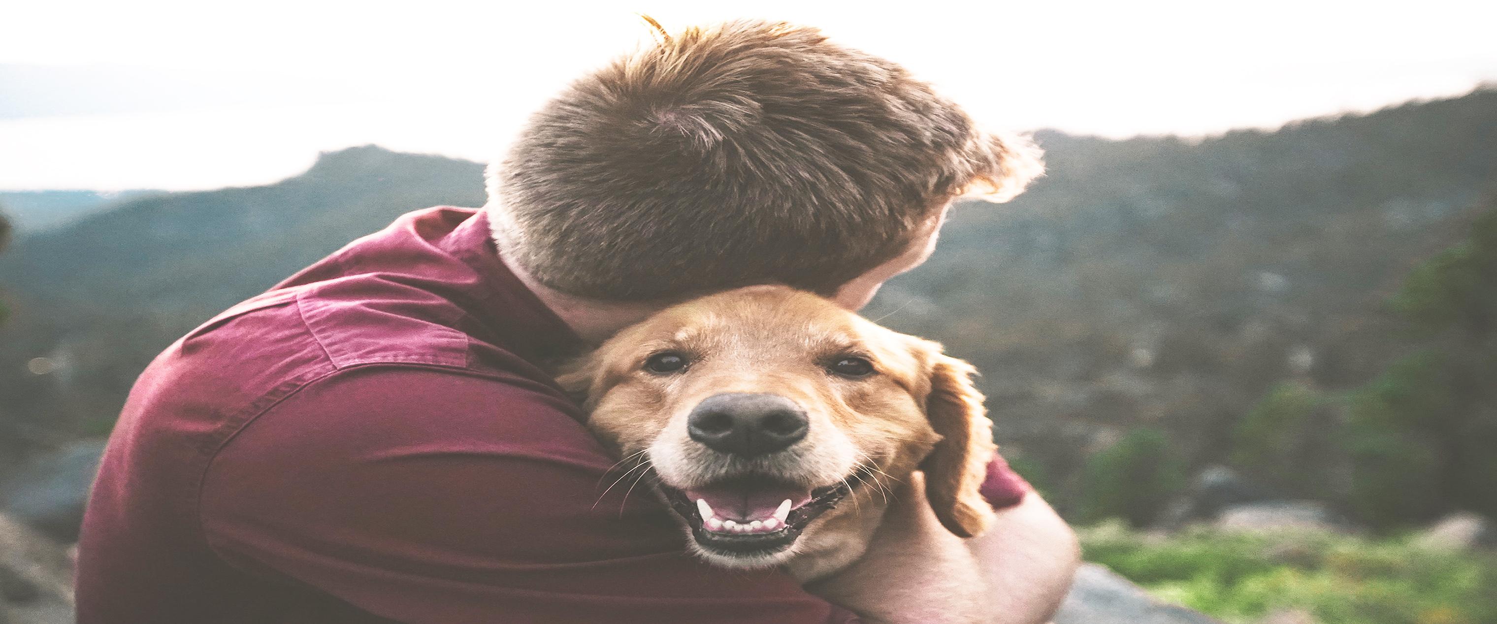 Por el bienestar de personas y animales